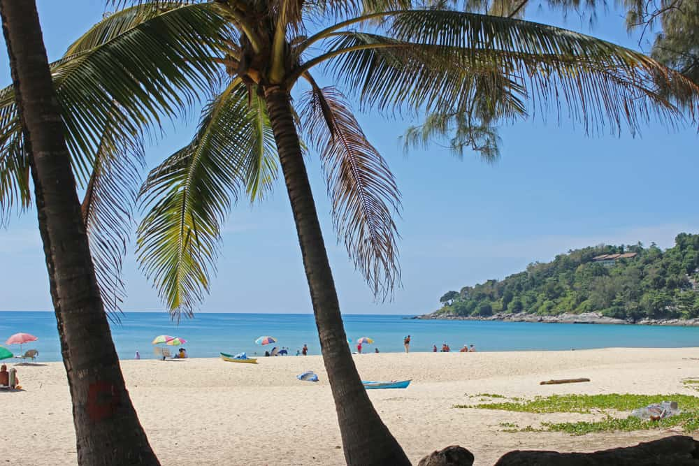 Patong beach in Phucket with palm trees in the foreground