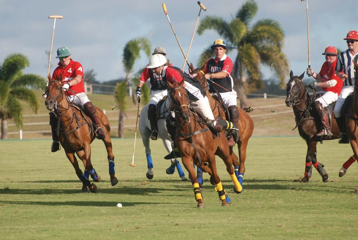 Barbados Polo Season - Top Caribbean events and festivals 2016