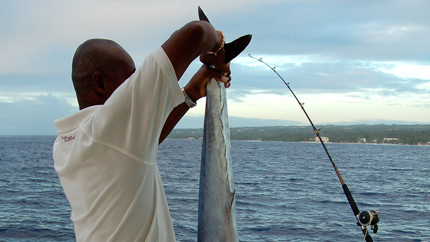 Deep Sea Fishing - Things to do in Antigua